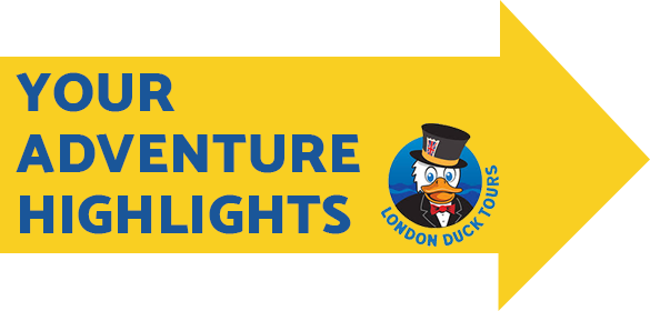 Your Adventure Highlights