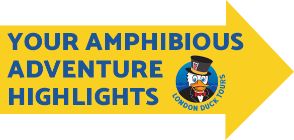 Your Amphibious Adventure Highlights